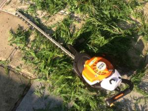 hedge trimming equipment