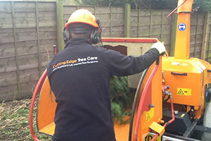 Cutting Edge Tree Care Professional using chipper